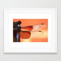 stained glass Framed Art Prints featuring Stained Glass by Mark Alder