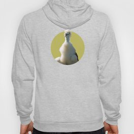 Ahoy young pirate Hoody