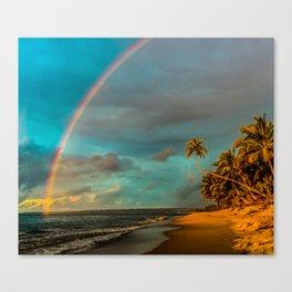 Rainbow Palm Tree Rincon Puerto Rico Canvas Print