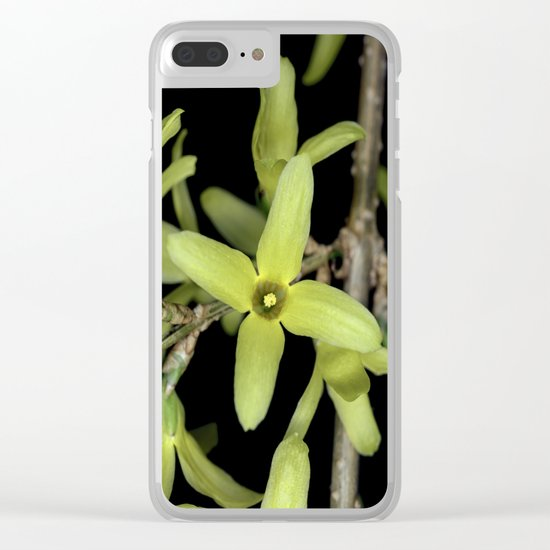 Forsythia Close up Clear iPhone Case