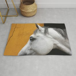 Cleo - Equine Horse photography by Ingrid Beddoes Rug