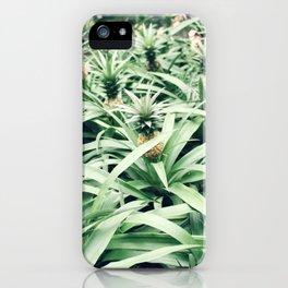 Pineapple Grove iPhone Case