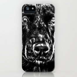 STREETDOG IN ROMANIA iPhone Case