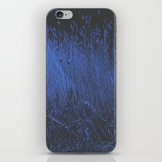 Blue Jay Whey iPhone & iPod Skin