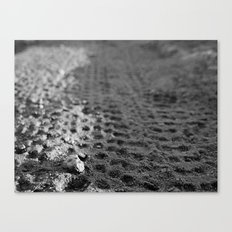 Tread 2015 B/W Canvas Print
