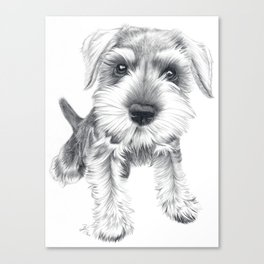 Schnozz the Schnauzer Canvas Print