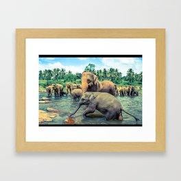 Pinnawala - Sri lanka Framed Art Print