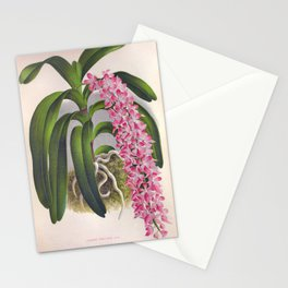 Vintage Lilac Orchid Aerides Fieldingi Lindenia Collection Stationery Cards