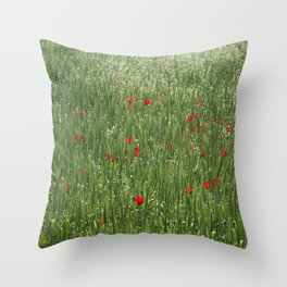 Poppy Field And Springtime Hay Meadow  Throw Pillow