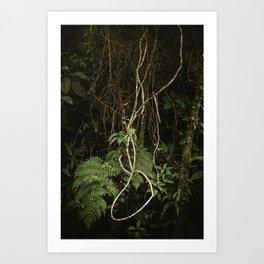 The Mantiqueira Ridge nº 12 Art Print