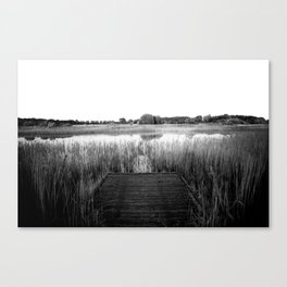 Untitled 1 Canvas Print