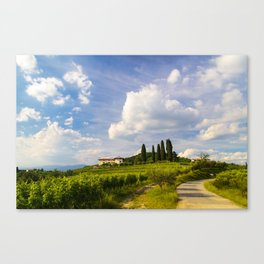Sunset in the vineyards of Rosazzo Canvas Print