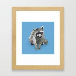 Racoon. Framed Art Print