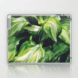 Hosta Laptop & iPad Skin