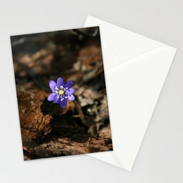 Hepatica nobilis in the humus Stationery Cards