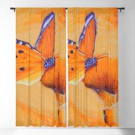 Sweet Wonder | Douce Merveille Blackout Curtain