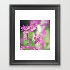 Chase Your Wildest Dreams Framed Art Print