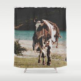 Boss cow  Shower Curtain