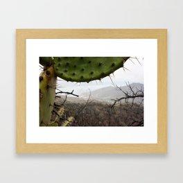 Island Catalina in the depth of rain Framed Art Print