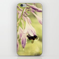 Is that you Spring iPhone & iPod Skin