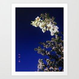 floral tree at dusk Art Print