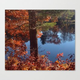 Fall on the Pond Canvas Print