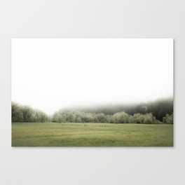 ONE FOGGY DAY... Canvas Print