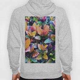 438 - Abstract garden design Hoody