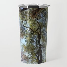 Dos Picos Ramona Oak Tree Travel Mug