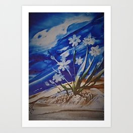 White desert flowers with a blue sky Art Print
