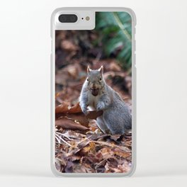 Squirrel in the Spotlight Clear iPhone Case