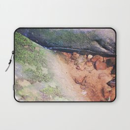 Life in the Undergrowth 03 Laptop Sleeve