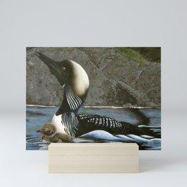 Arctic Loon Mini Art Print