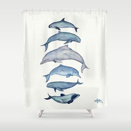 """Rare Cetaceans"" by Amber Marine - Watercolor dolphins and porpoises - (Copyright 2017) Shower Curtain"