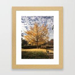 Goodale Fall Framed Art Print