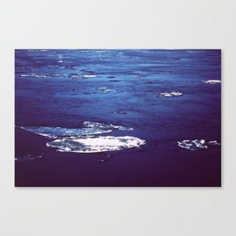 Frozen River 2 Canvas Print