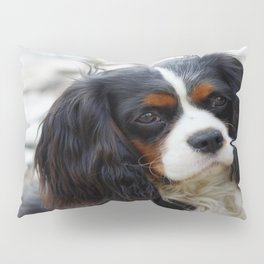 King Charles Cavalier Portrait Pillow Sham