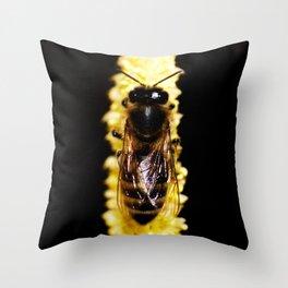 Bee on yellow catkin Throw Pillow