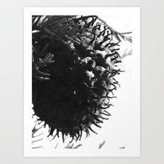 strange fungus 2017 II Art Print