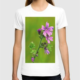 Common Mallow (Cheeseweed) T-shirt