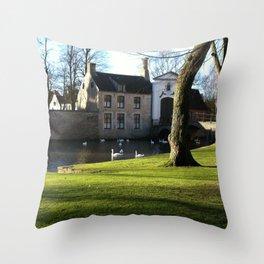 Nature and Urban Life. Throw Pillow