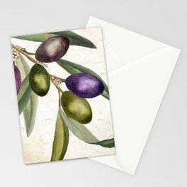 Olive Branch I Stationery Cards