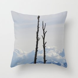 Perch With A View - IV Throw Pillow