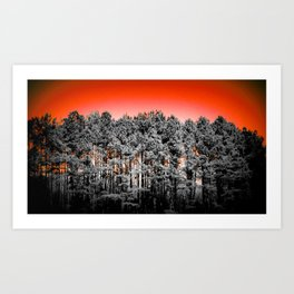 Gray Trees Vibrant Orange Sky Art Print