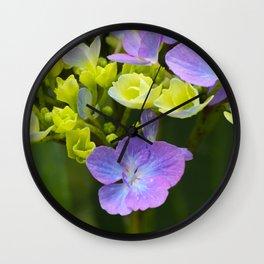 Hydrangeaceae Wall Clock