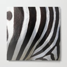 """Pop Safari 01 Zebra"" Metal Print"