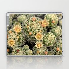 Pretty Prickly Laptop & iPad Skin