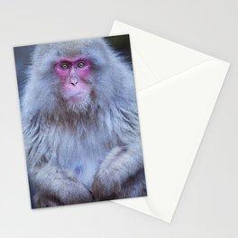 Japanese snow monkey sitting at hot spring in Jigokudani Park Stationery Cards