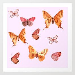 Summer buteflies Art Print