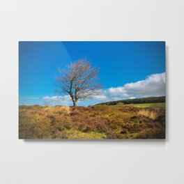 Peak District Metal Print